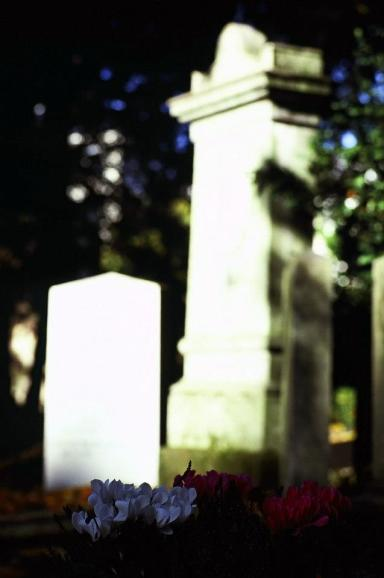 花在墓園中隨處可見