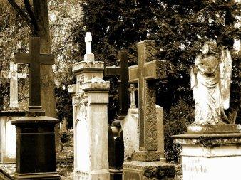 老墓園一景