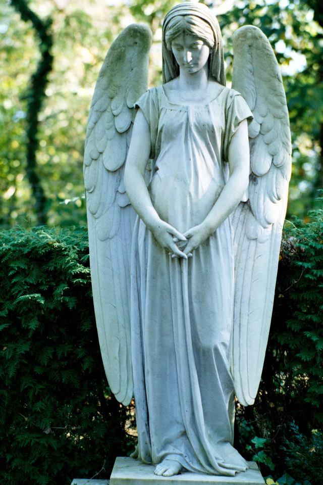 波昂墓園中的天使雕像。