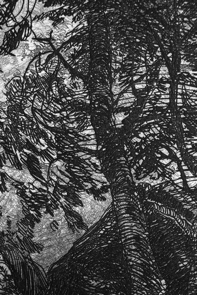 林中狐狸局部二,在這微距攝影下的畫面,甚至可以看到立體線條的浮現,這是凹版版畫的迷人之處,在放大鏡下,宛如逼真的三D場面。