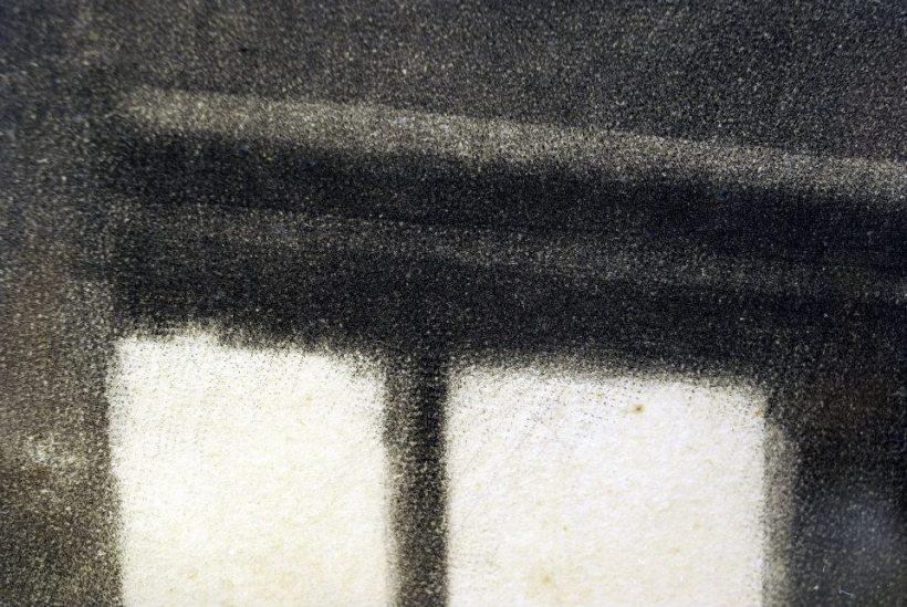 《母子圖》局部二,可以看見美柔汀銅版修整版面時的細小黑點。