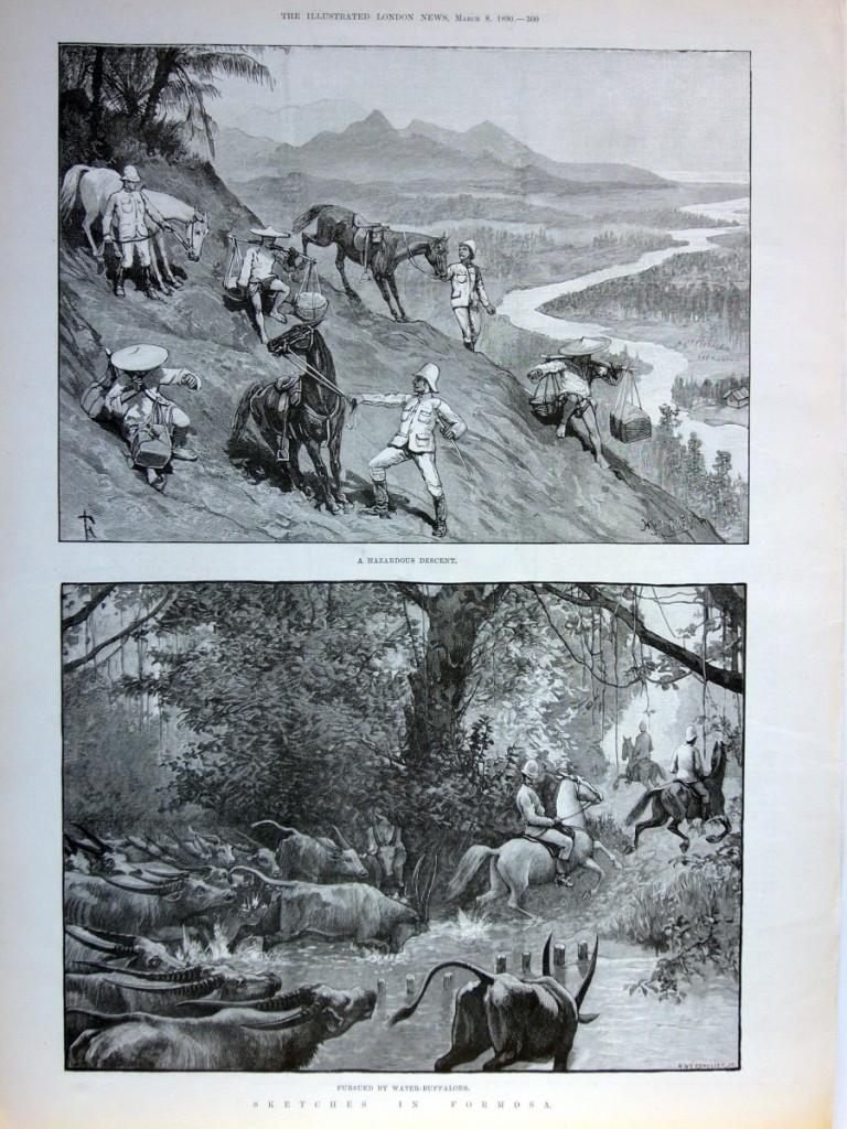 單頁ILLUSTRATED LONDON NEWS畫報,1890年3月8日。含二張木刻插圖與畫報背面報導文章,品相良好。本張畫報描繪作者一行旅途上的險惡,甚至遭到水牛群追趕。