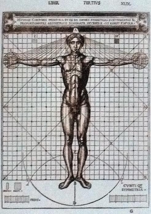 維特魯威人(Vitruvian Man),1521年義大利文版插圖。