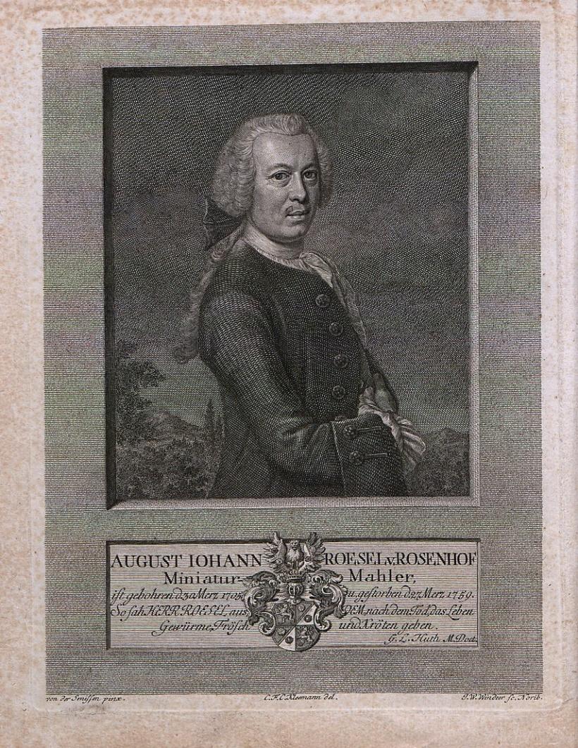 德國博物學家奧古斯特‧約翰‧羅瑟(August Johann Rösel von Rosenhof, 1705-1759)。