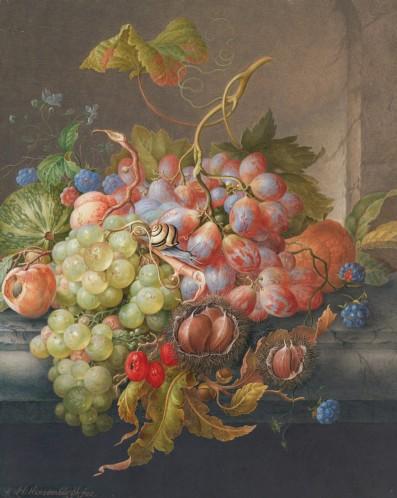 衡斯騰布格(Herman Henstenburgh, 1667 – 1726),有栗子與小蝸牛的水果靜物,水彩,約1700年。