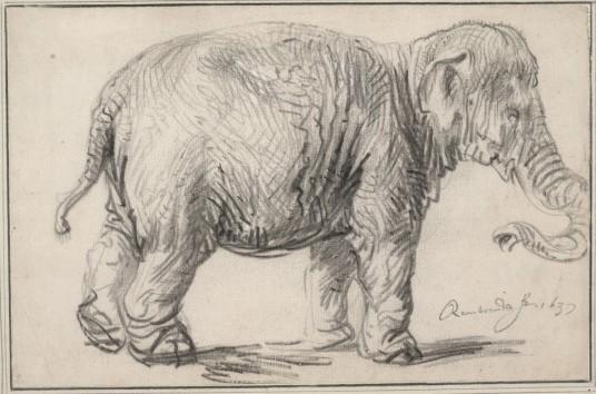 林布蘭特(Rembrandt Harmenszoon van Rijn, 1606-1669),大象,鉛筆素描,1637年。