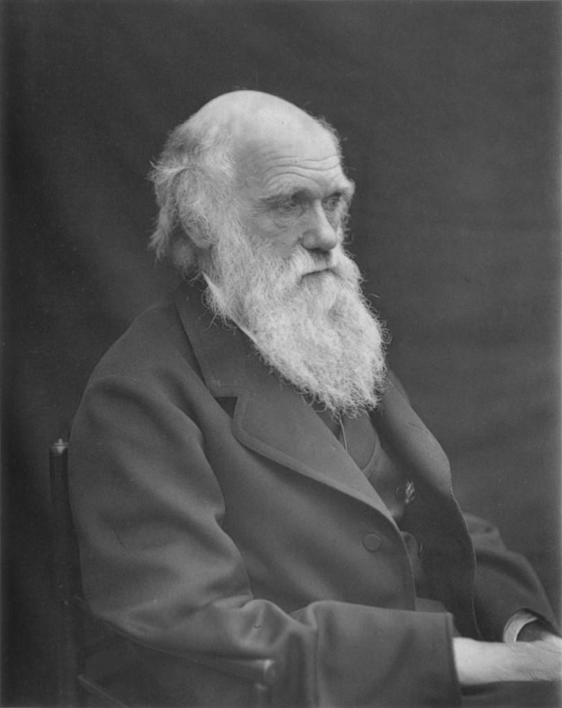 達爾文,1874年,李奧納德‧達爾文(Leonard Darwin)拍攝。